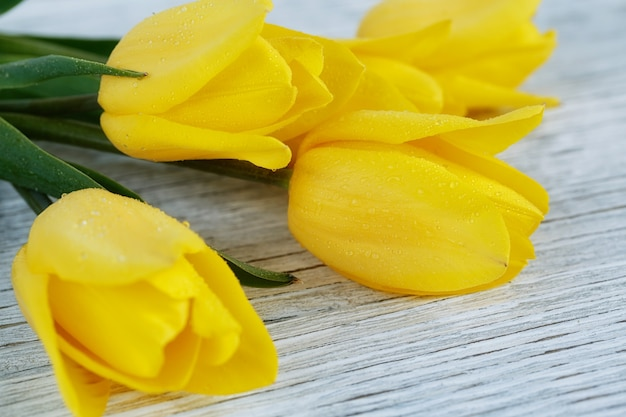 Fresh yellow tulips on white wooden surface