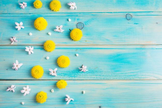 Freschi boccioli di fiori gialli e bianchi