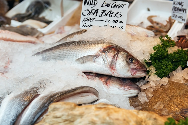 Freshly caught sea bass fishes and other seafood on display at borough market in london, uk. dicentrarchus labrax