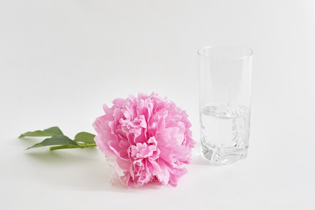 Freshly cut peony lies on the table, next to a vase of water.