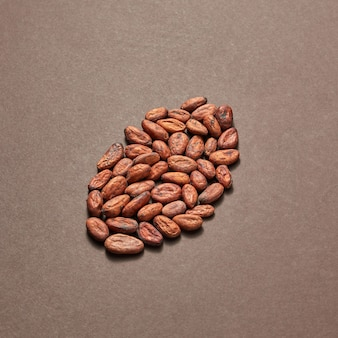 Freshly dried natural cocoa peas in the shape of big bean