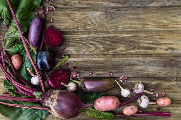 Freshly picked homegrown vegetables