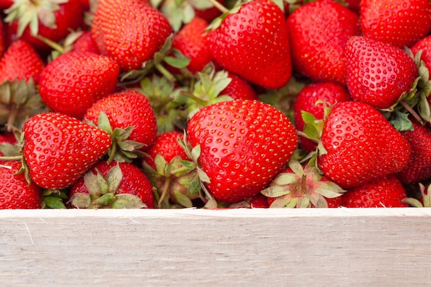 Freshly picked strawberry in a wooden box.