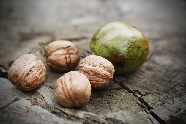 Freshly picked walnuts in shells on log. nature concept. selective focus.