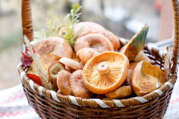Freshly redhead edible mushrooms in a wicker basket.