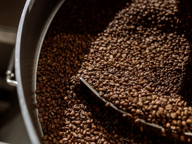 Freshly roasted coffee beans in cooling tray