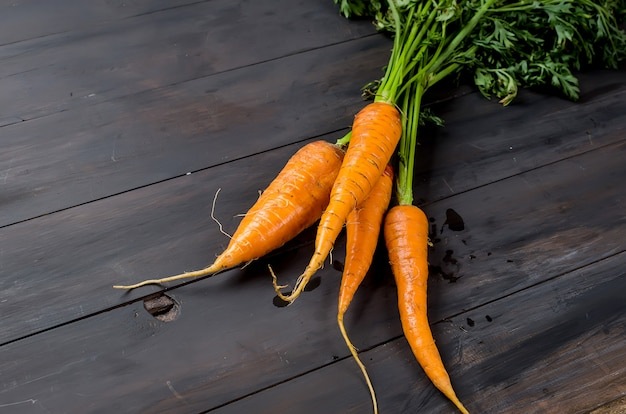 Freshly washed whole carrots with leaves