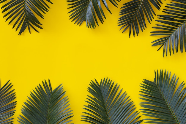 Freshness green leaves of wild palm on yellow paper.