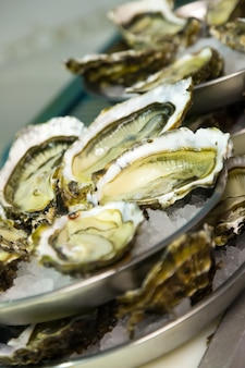Freshness oysters on plates