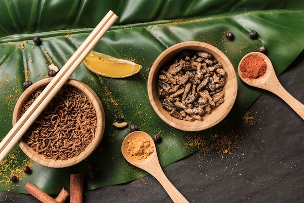 Fried bugs in bowls with spices on monstera leaf Free Photo