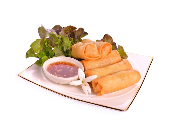 튀긴 중국 전통 스프링 롤 음식
