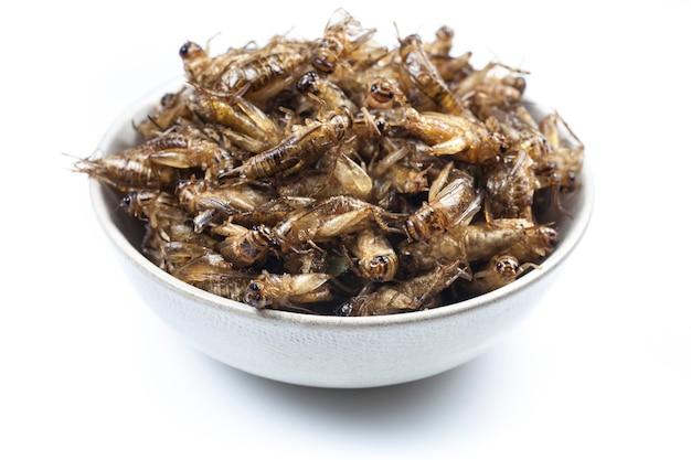 튀긴 귀뚜라미는 태국 음식입니다.