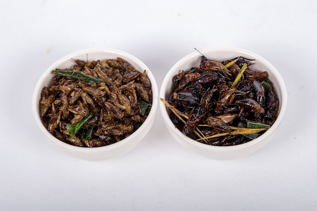 Fried crickets isolated on white