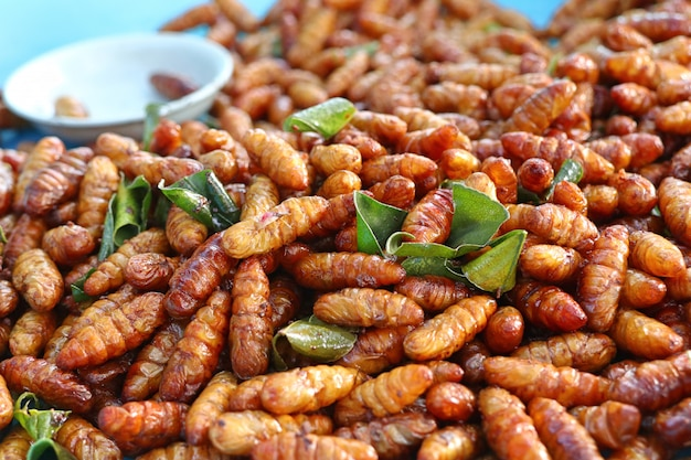 Fried insect at street food