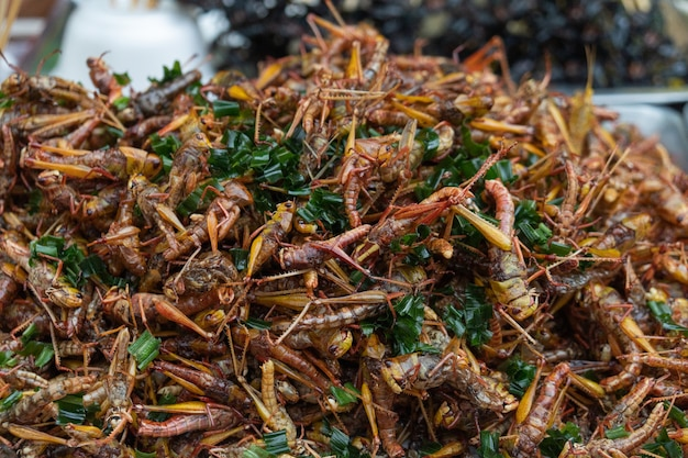 Fried insects thai street food market.