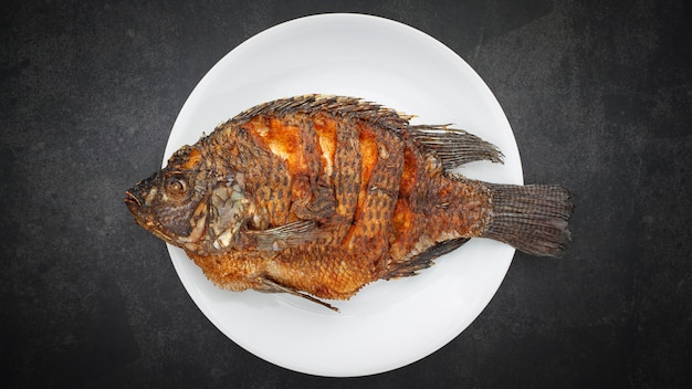 Fried nile tilapia fish with simple white plate