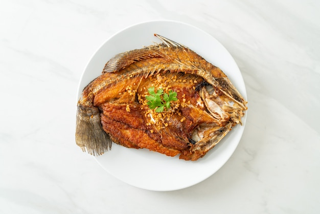 Fried sea bass fish with garlic on plate