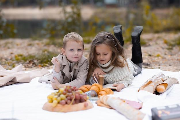 친구, 소년과 소녀는 공원에서 피크닉에