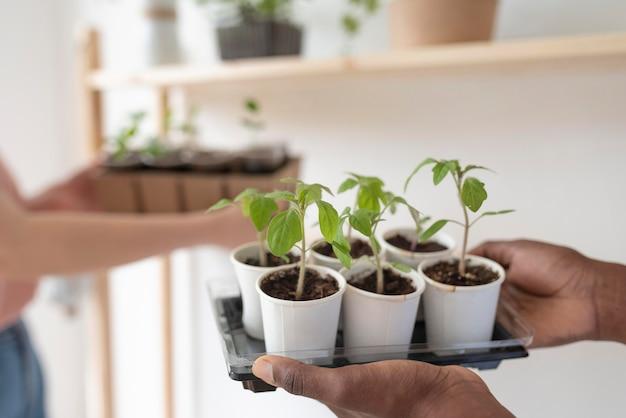 Friends having a sustainable garden indoors