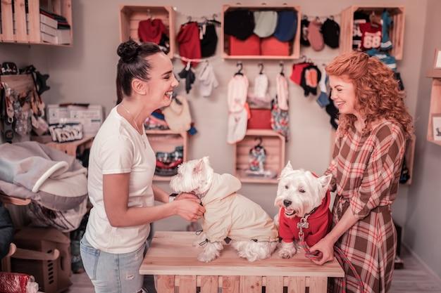 Друзья смеются. веселые счастливые друзья смеются, надевая одежду на своих милых собак
