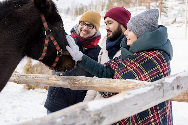 Friends petting horses on ranch