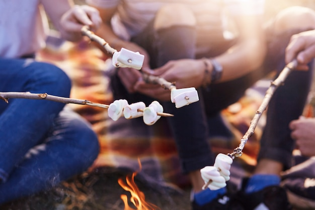 たき火、一緒に暇な時間を過ごす人々のグループで甘いマシュマロを焼く友人