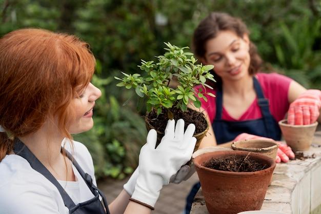 温室で植物の世話をしている友達