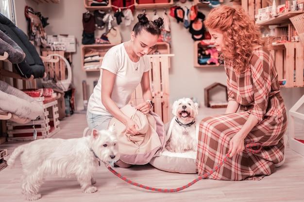 Дружит с собаками. два лучших друга чувствуют удивительную встречу, проводя время со своими собаками