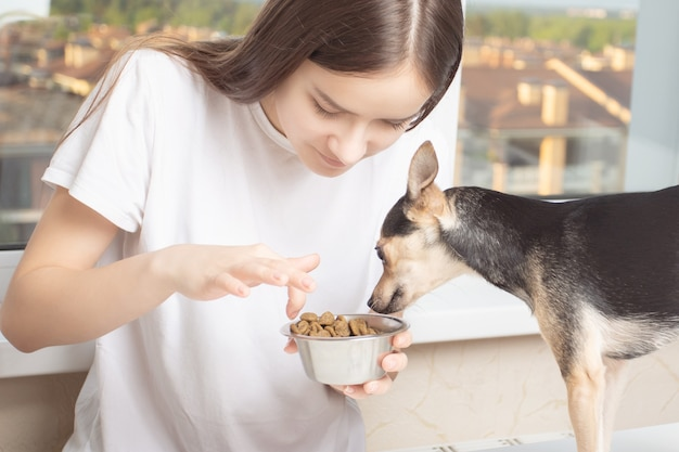 Friendship concept with pet. a young girl in home clothes gives food to a small dog, looks in her bowl