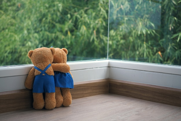 The friendship and relationship of two teddy bears are embracing each other, looking at the view of the bamboo on the window,