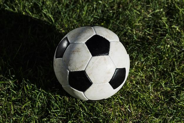 Da sopra la palla sull'erba del tappeto erboso