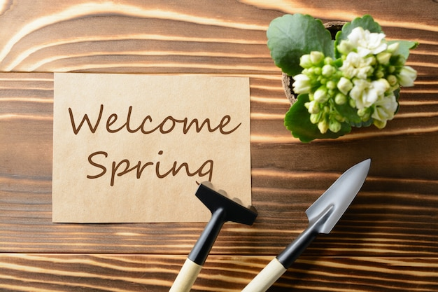 From above welcome spring words and different instruments for gardening on the wooden table