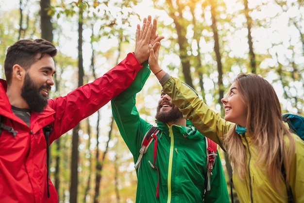 From below young men and woman in colorful outerwear smiling and giving high five while travelling through forest in autumn