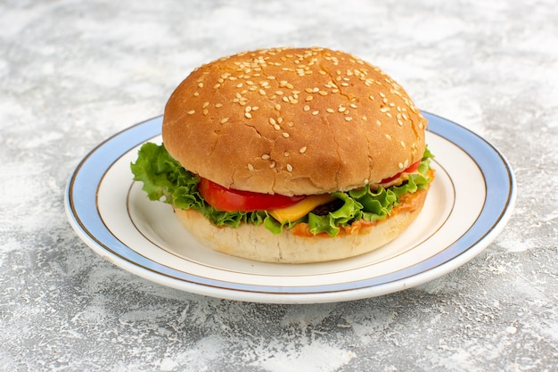 Front close view chicken sandwich with green salad and vegetables inside on the white desk