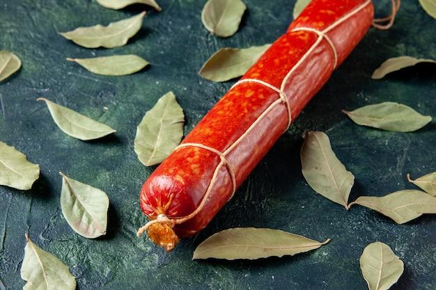 フロントクローズビュー新鮮なおいしいソーセージのダークミートパンサンドイッチミールバンズカラーアニマルフードバーガー