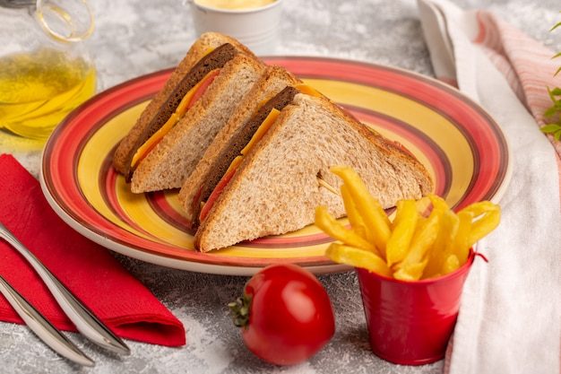 Front close view tasty toast sandwiches with cheese ham inside plate with french fries and sour cream