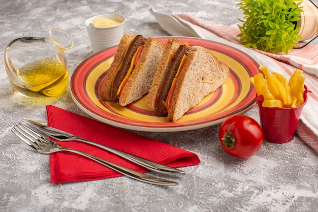 Front close view tasty toast sandwiches with cheese and ham inside plate with french fries and sour cream