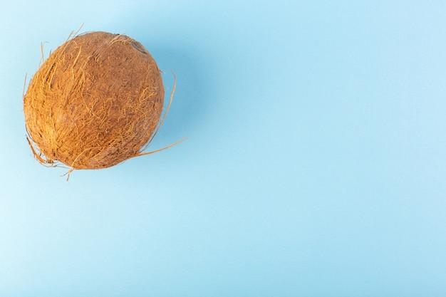 Un fronte chiuso chiuso noci coco intero fresco latteo fresco isolato sullo sfondo blu ghiacciato tropicale frutta esotica dado