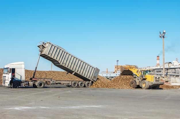 製糖工場でのテンサイのローディングに関する動作中のフロントエンドローダー