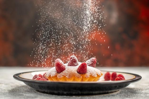 Torta di frutti di bosco vista frontale con zucchero in polvere sul piatto ovale su superficie scura isolata