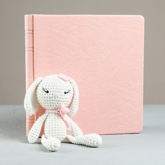 Front view book with bunny toy