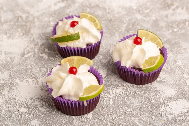 Front view of chocolate cakes with cream and lemon slices