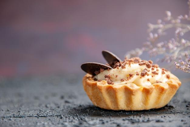 Вид спереди шоколадный пирог на изолированном фоне