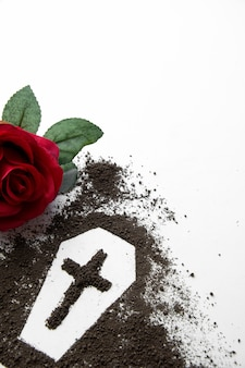 Front view of coffin shape with dark soil and red flower on white surface