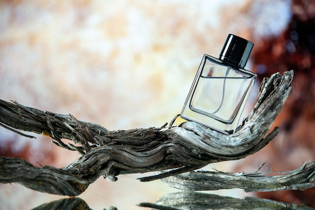 Front view of cologne bottle on rotten tree branch on beige abstract background