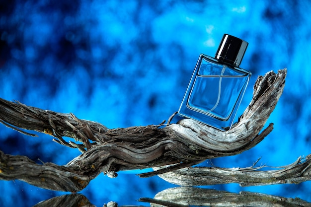 Front view of cologne bottle on rotten tree branch on blurred blue background
