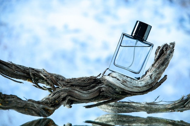 Front view of cologne bottle on rotten tree branch on blurred light blue background