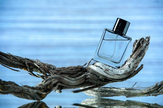 Vista frontale della bottiglia di colonia sul ramo di un albero marcio su sfondo azzurro spazio libero