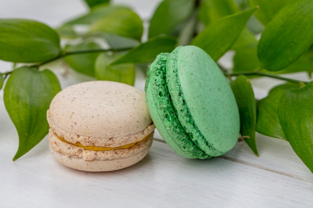 Front view of colored macarons with a branch of leaves on a white surface
