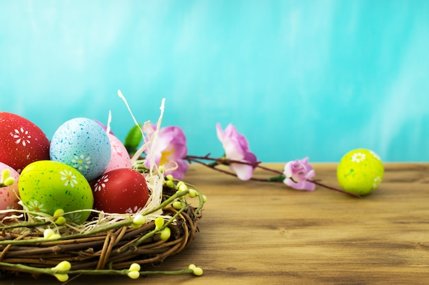 Front view of a easter eggs in nest with  spring flowers branches on brown wood and turqouise background.